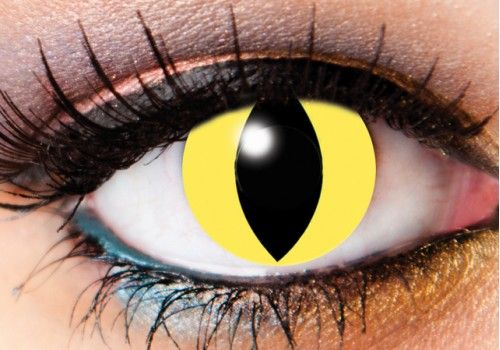 Cats Eye Contacts - 1 Day