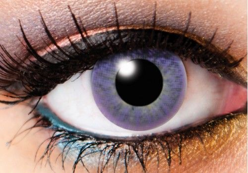 Tri Tone Violet Contacts - 90 Day